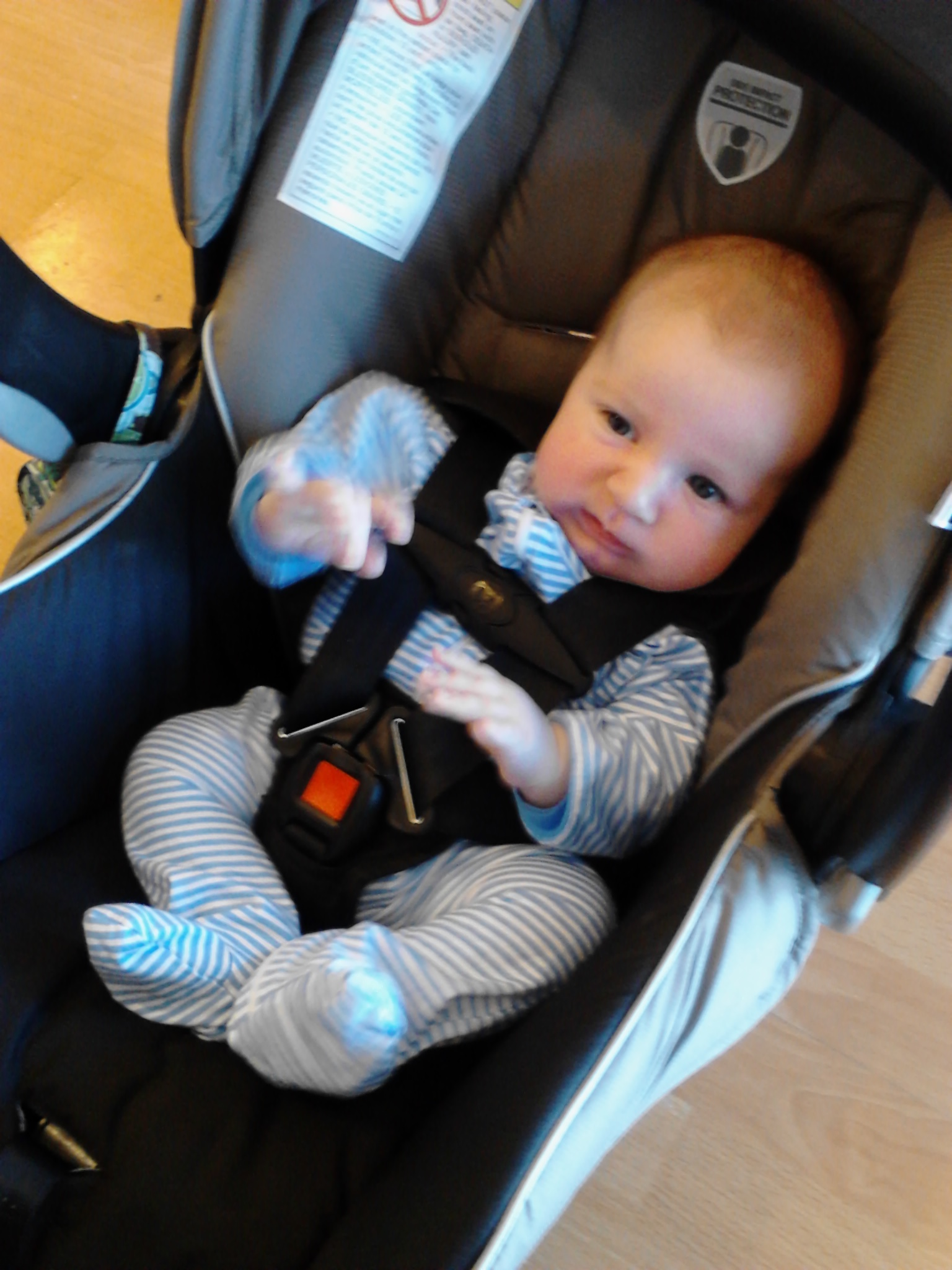 Resources for finding the best car seats